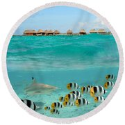 Over-under With Shark And Butterfly Fish At Bora Bora Round Beach Towel
