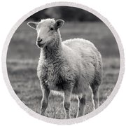 Sheep Art  Round Beach Towel by Lucid Mood