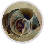 Round Beach Towel featuring the photograph Shell 16 by WB Johnston
