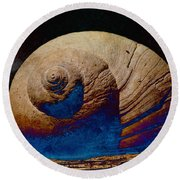 Round Beach Towel featuring the photograph Shelled by WB Johnston