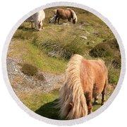 Shetland Ponies Round Beach Towel