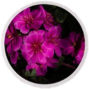 Shocking Pink And Fuchsia - A Silky Succulent Bouquet Round Beach Towel