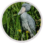 Shoebill Stork Round Beach Towel