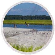 Shorebirds And Marsh Grass Round Beach Towel