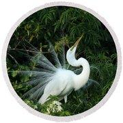 Showy Great White Egret Round Beach Towel