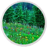 Shrine Pass Wildflowers Round Beach Towel