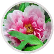 Shy Peony Round Beach Towel by Gail Butler