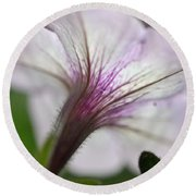 Round Beach Towel featuring the photograph Shy Petunia by Larry Bishop