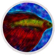 Siamese Fighting Fish II Round Beach Towel by Anita Lewis