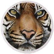 Siberian Tiger Closeup Round Beach Towel
