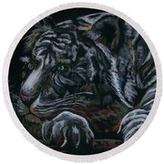 Siberian Tiger Round Beach Towel by Peter Suhocke