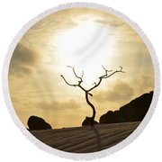 Silhouetted Tree At Dawn In Aruba Round Beach Towel by DejaVu Designs