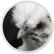 Silkie Chicken Portrait Round Beach Towel by Jeannette Hunt
