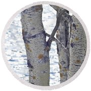 Silver Birch Trees At A Sunny Lake Round Beach Towel by Heiko Koehrer-Wagner