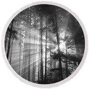 Silver Light Round Beach Towel by Diane Schuster