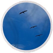 Round Beach Towel featuring the photograph Silver Salute by Lizi Beard-Ward