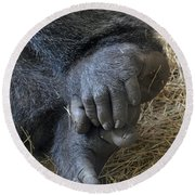Round Beach Towel featuring the photograph Silverback Toes by Robert Meanor