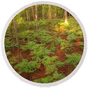 Fern Favorite Round Beach Towel