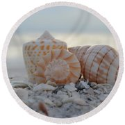 Simplicity And Solitude Round Beach Towel