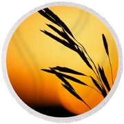 Simply Natural Round Beach Towel by Penny Meyers