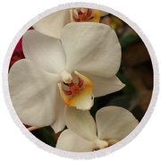 Round Beach Towel featuring the photograph Cascade Of White Orchids by Dora Sofia Caputo Photographic Art and Design