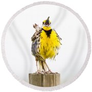 Singing Meadowlark 2 Of 3 Round Beach Towel