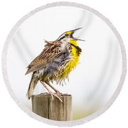 Singing Meadowlark 3rd Of 3 Round Beach Towel