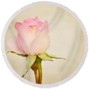 Single Baby Pink Rose Round Beach Towel