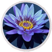 Single Lavender Water Lily Round Beach Towel