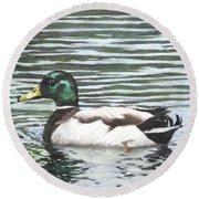 Single Mallard Duck In Water Round Beach Towel