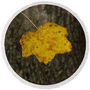 Round Beach Towel featuring the photograph Single Poplar Leaf by Nick Kirby