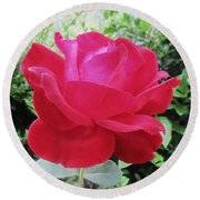 Single Red Rose Round Beach Towel