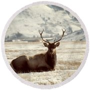 Sitting Bull Elk Round Beach Towel by Juli Scalzi