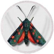 Six Spot Burnet Butterfly - Zygaena Filipendulae Naturalistic Painting - Nettersheim Eifel Round Beach Towel