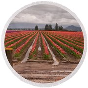 Round Beach Towel featuring the photograph Skagit Valley Tulip Farmlands In Spring Storm Art Prints by Valerie Garner