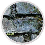Round Beach Towel featuring the photograph Skc 0301 Tiny Twin Leaves by Sunil Kapadia