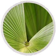 Round Beach Towel featuring the photograph Skc 0691 The Paths Of Palm Meeting At A Point by Sunil Kapadia