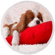 Sleeping Puppy On Red Pillow Round Beach Towel by Anthony Fishburne