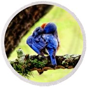 Sleepy Bluebird Round Beach Towel