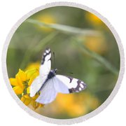 Small White Butterfly On Yellow Flower Round Beach Towel by Belinda Greb