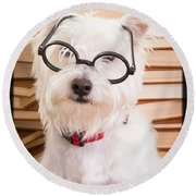 Smart Doggie Round Beach Towel by Edward Fielding