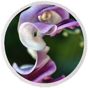 Round Beach Towel featuring the photograph Snail Flower by Joy Watson
