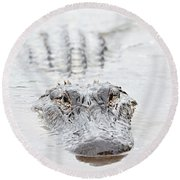 Sneaky Swamp Gator Round Beach Towel