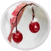 Snow Berries Round Beach Towel