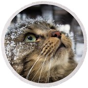 Snow Cat Round Beach Towel