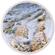 Round Beach Towel featuring the photograph Snow Covered Cactus Below Mount Whitney Eastern Sierras by Dave Welling
