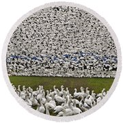 Snow Geese By The Thousands Round Beach Towel by Valerie Garner
