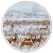 Snow Grazers Round Beach Towel
