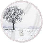 Snowbird Round Beach Towel