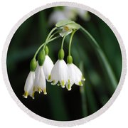 Snowdrop Lily Round Beach Towel by DejaVu Designs